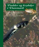 Padder og krybdyr i Danmark